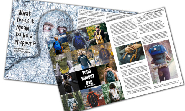 BugOut Magazine Layouts